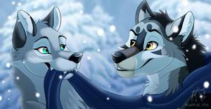 Winter Woofs
