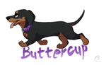 Buttercup Badge