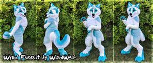WindWolf Fursuit 2019