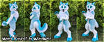 WindWolf Fursuit 2019 by WindWo1f