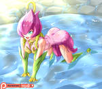 Commission: Water Lily