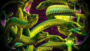 Only creepy snakes vieta