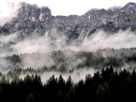 After a cloudburst by edelweiss26