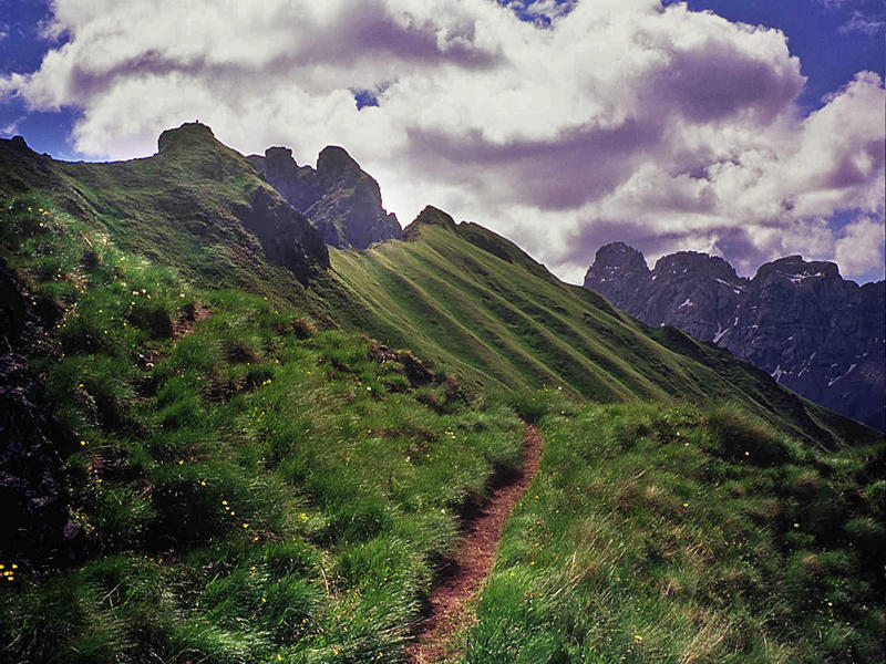 A path for walking 2 by edelweiss26