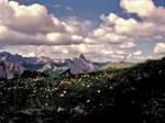 Windborne clouds by edelweiss26