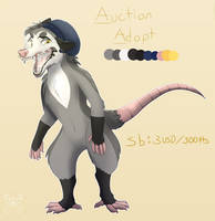 Possum Adopt Auction CLOSED by Lynxmur