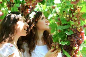 Summer day by Kaya-Nurel