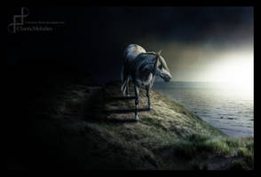 Begin Again by AstralPaint