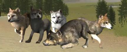 Wolfquest explore wolfquest on deviantart aaronmcloud 23 4 wolfquest banner by acekristal ccuart Choice Image
