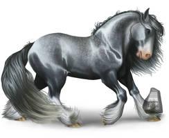 Silver Gypsy by AdmYrrek