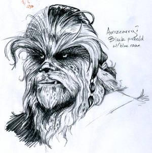 Wookiee Sketch