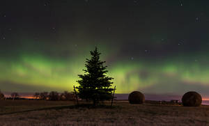 First Northern Lights by MarshallLipp