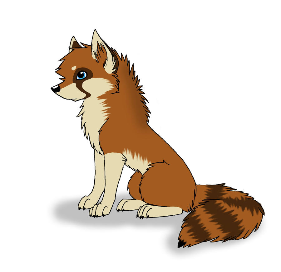 Red Panda Wolf Hybrid by ElectricRainbowBloodRed Panda Drawing Furry