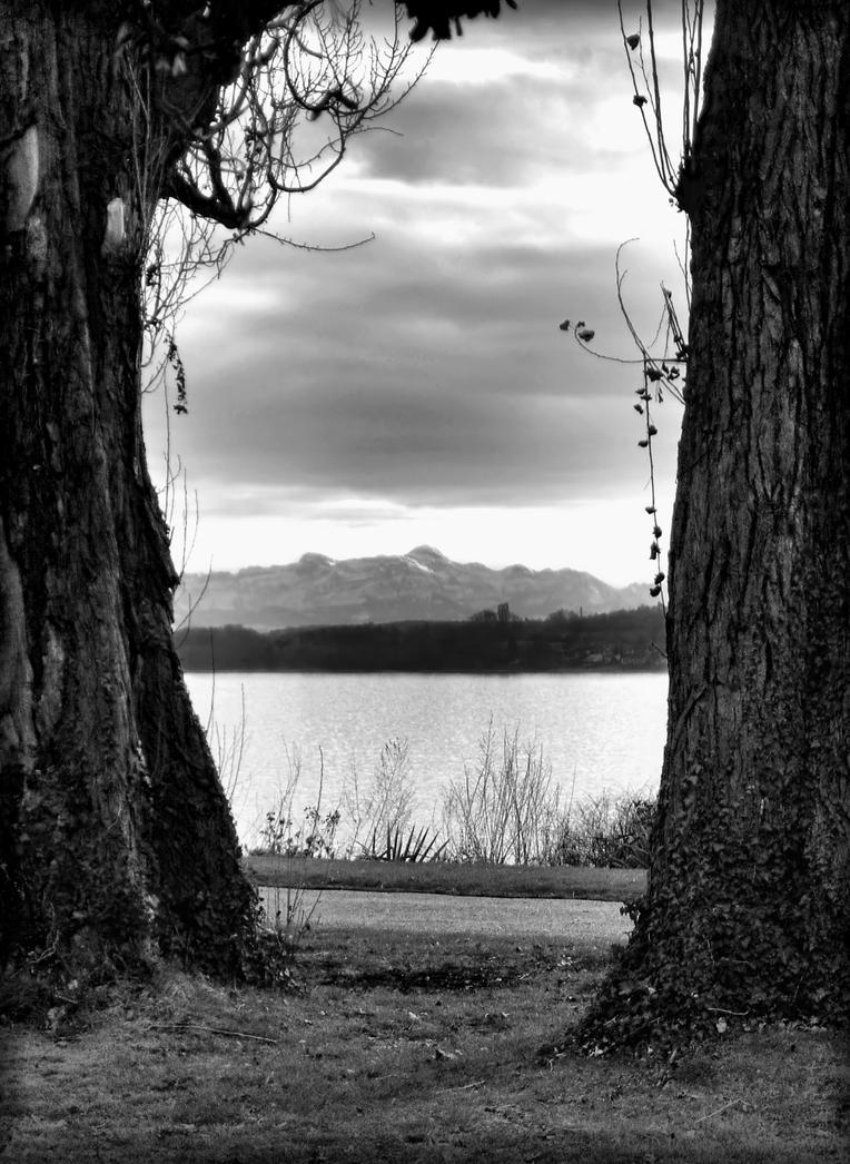 Natural Frame by PsychoBudgie on DeviantArt