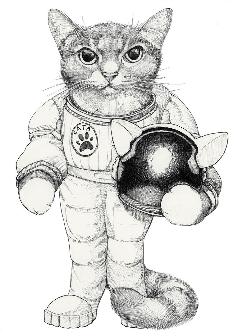 Momo space-cat