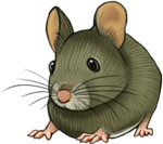 Inbetween small art - Greenish Mouse