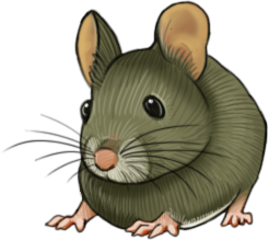 Inbetween small art - Greenish Mouse by Hituro