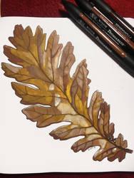 Inktober 2018: 22 Fallen Leaf by Hituro