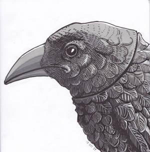 Inktober 2019: 14 Raven
