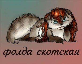 Folda's Profile Picture