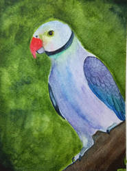 parrot painting by MeloDinosauria