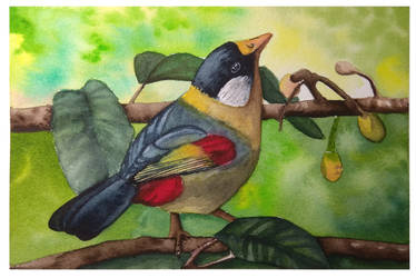 bird painting by MeloDinosauria