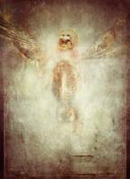 Bones of Angels by wreckles