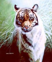 Kamiri by wildartguy