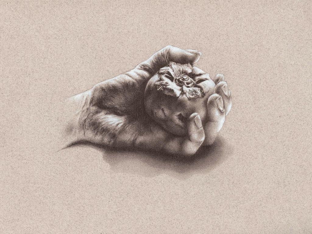 Hand study by sjhjkim