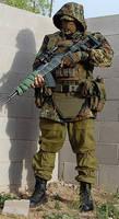 Guerrilla Warfare 4