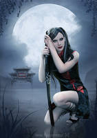 .assassin. by AF-studios
