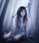 night butterflies by AF-studios