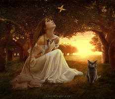 Before The Dawn by AF-studios