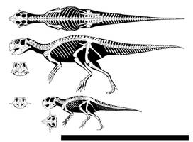 Early Cretaceous parrot by GetAwayTrike