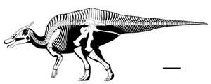 Tarbosaurus killer