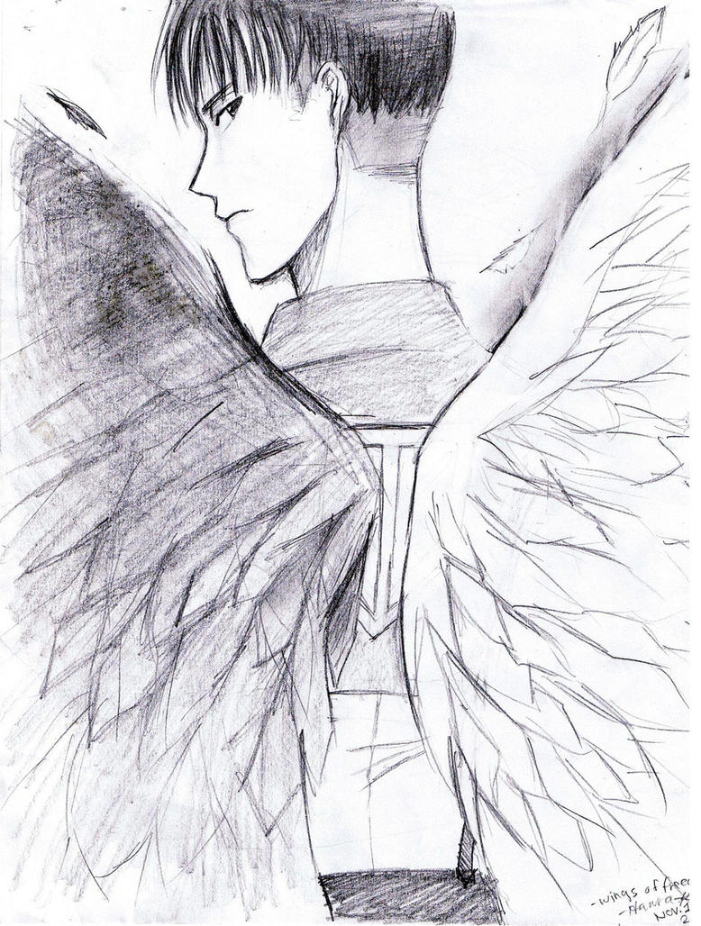 Wings of Freedom (crappy sketch) by Jeageractive on DeviantArt