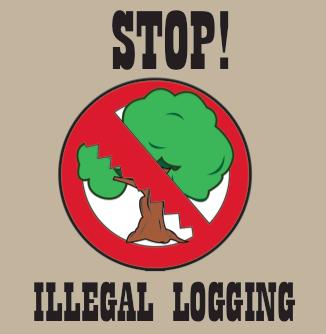 STOP!ILLEGAL LOGGING by rarasnp on DeviantArt