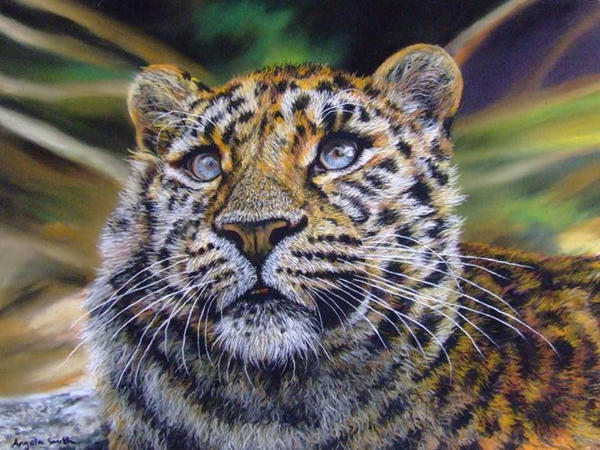Leopard cub (pastels) by AngelaMaySmith