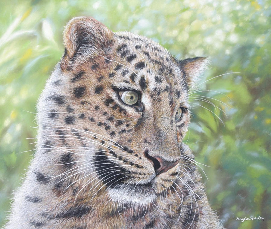 Leopard (pastels) by AngelaMaySmith