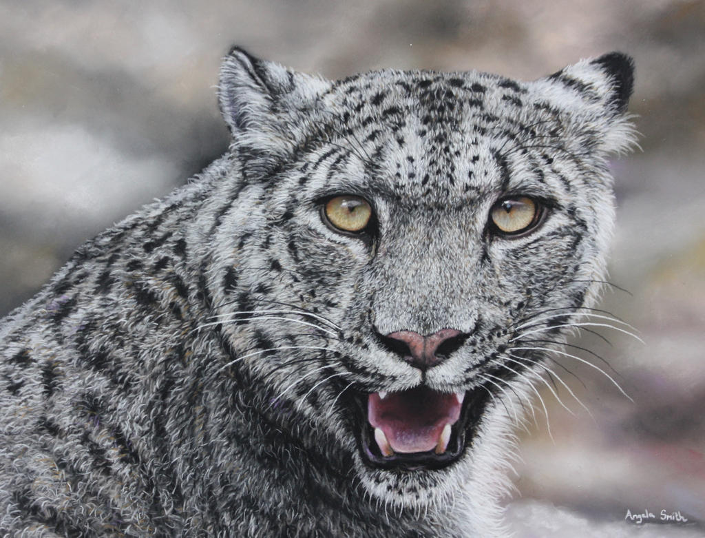 Snow Leopard (Pastel Pencils) by AngelaMaySmith