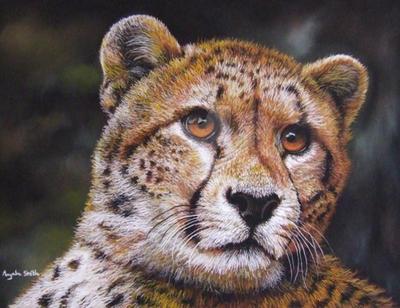 Cheetah (pastels) by AngelaMaySmith