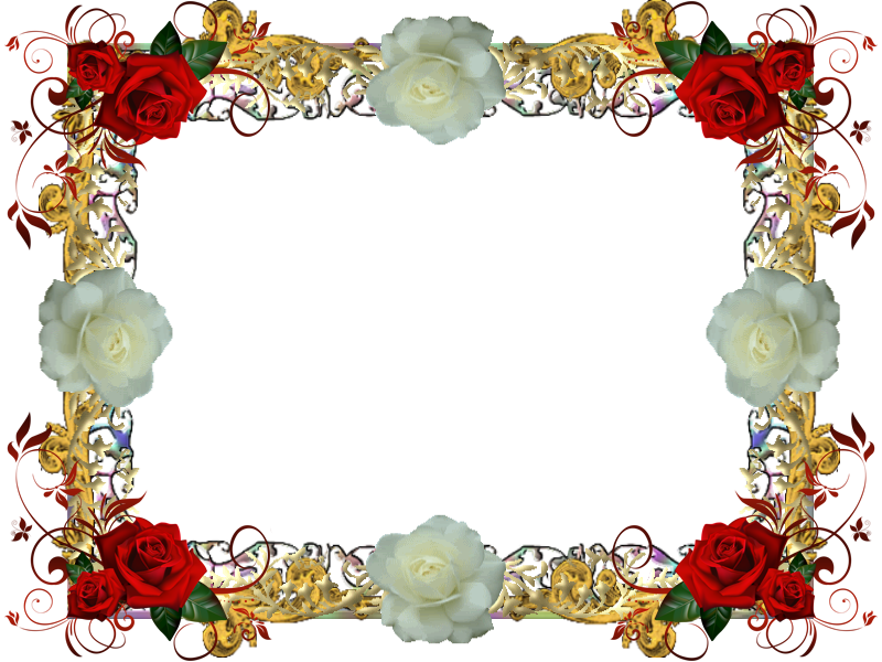 Red And White Rose Frame 1 by Lady1Venus on DeviantArt