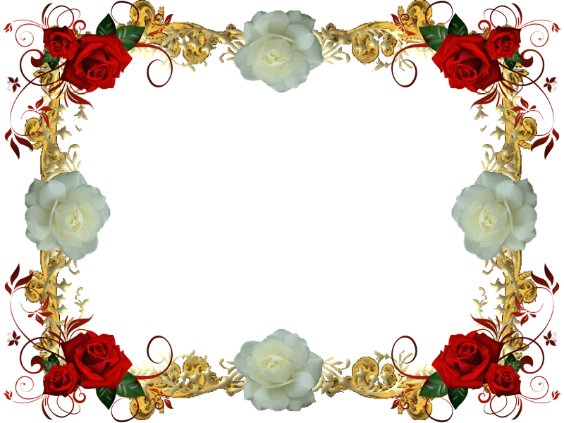 Red And White Rose Frame 3 by Lady1Venus on DeviantArt
