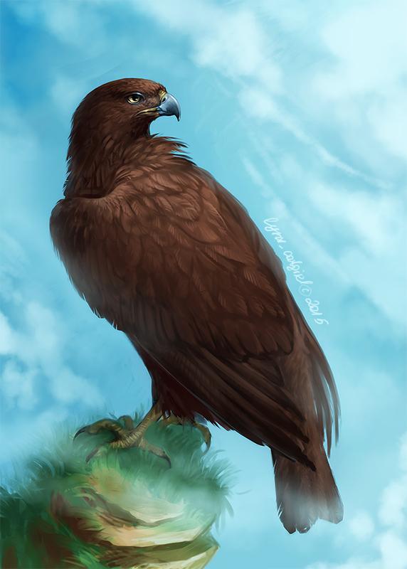 Black Kite by Lynx-Catgirl
