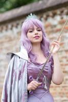 Fairy Warrior Princess by oasiaris