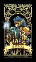Saint Seiya - Aquarius