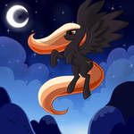 flying trough the night sky