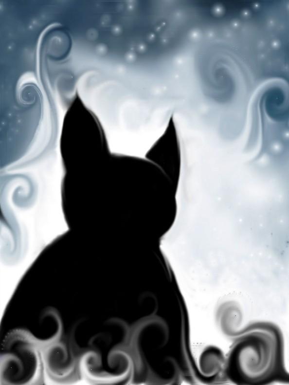 cat's fantasy by FadwaAngela