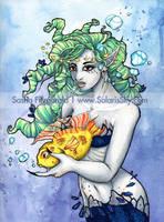 Sea Friends by SashaFitzgerald
