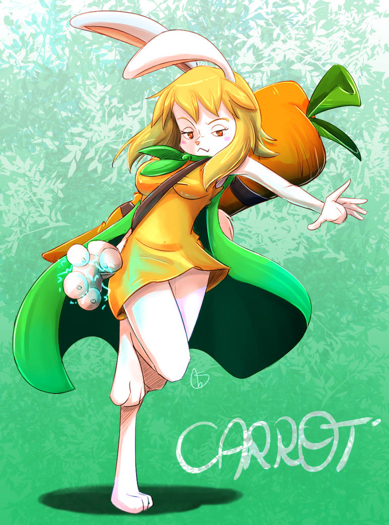 Carrot by S-concept